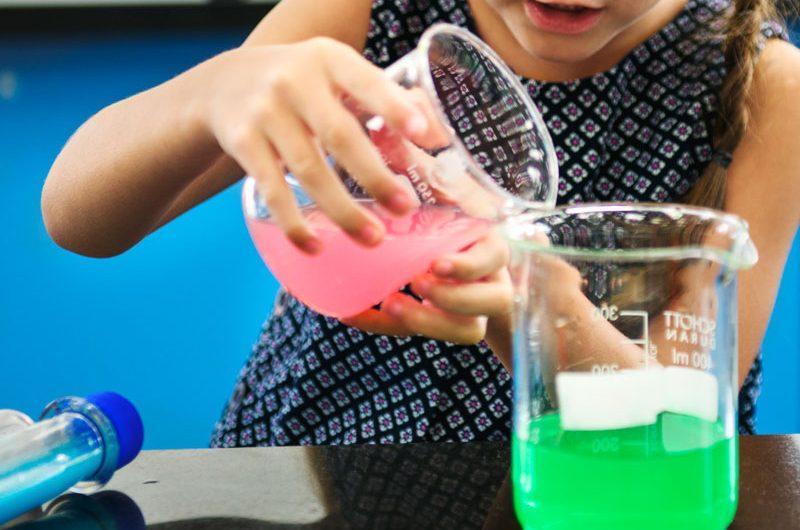 Les enseignements acquis en classe de découverte scientifique